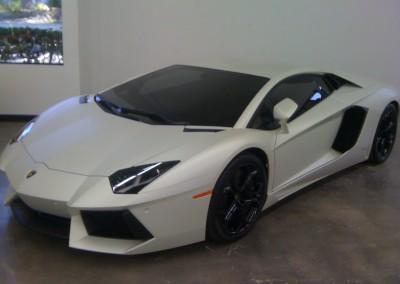 Lamborghini Window Tint